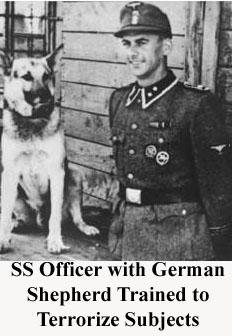 ss-terror-dog